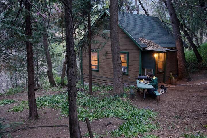 Dr. Ziph's Cabin One Hidaway