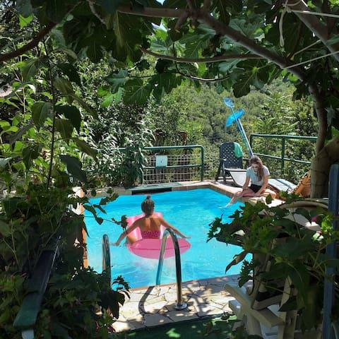 """Chalet """"Su Foxile"""", BBQ piscina per vacanza relax"""