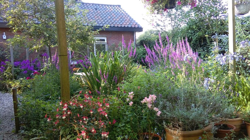 Eco Cottage Rosa 2 pers. - Zeist - Stuga