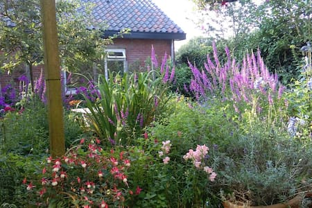 Eco Cottage Rosa 2 pers. - Zeist