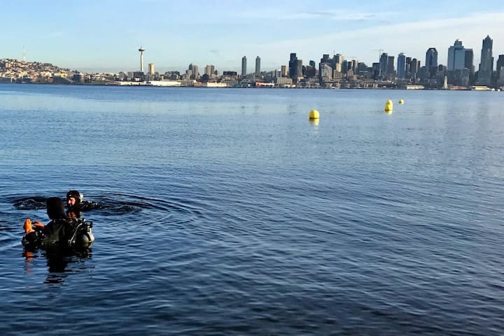 We are a short walk from a gorgeous skyline view and Cove 1, 2, and 3 which are great for scuba, kayaking, and stand-up paddle board, with rentals nearby. Spot a Giant Pacific Octopus, maybe, or sea lion definitely!