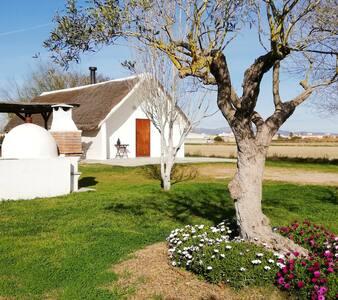 Typical house in Delta del Ebro