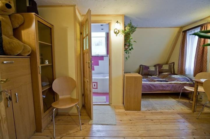 Room in the center of Zakopane - Zakopane - บ้าน