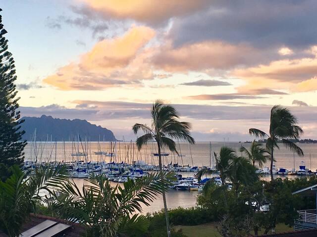 Honu Hale...New! Ocean View - Kaneohe - Apartment