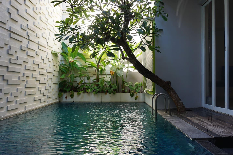 Cozy Private Swimming Pool