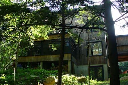 Fenêtres ouvertes sur la forêt - Bolton-Est - Rumah