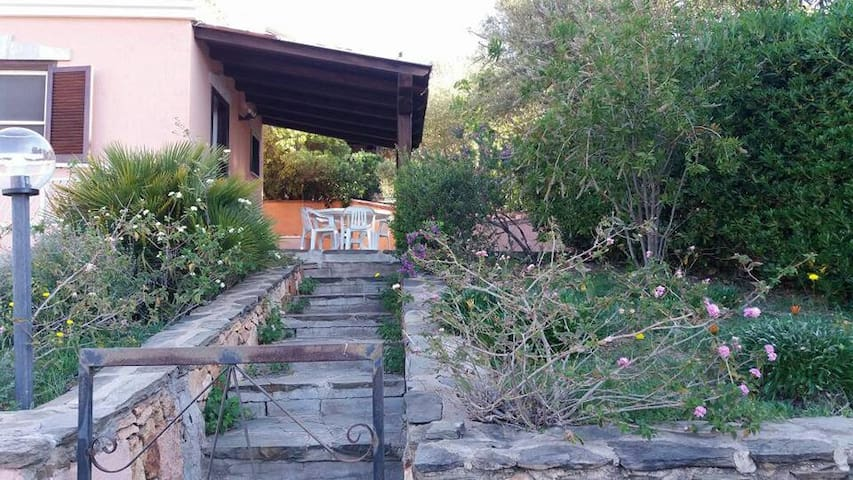 bellissimo trilocale affitto - Budoni - Holiday home