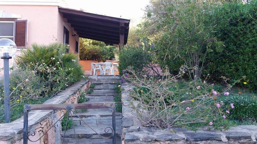 bellissimo trilocale affitto - Budoni - Vacation home