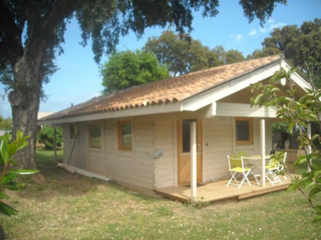 maison en bois au calme corse