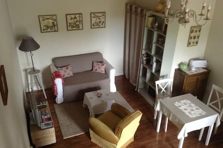 Private accommodation in the countr - Saint-Laurent-de-Gosse - Apartmen