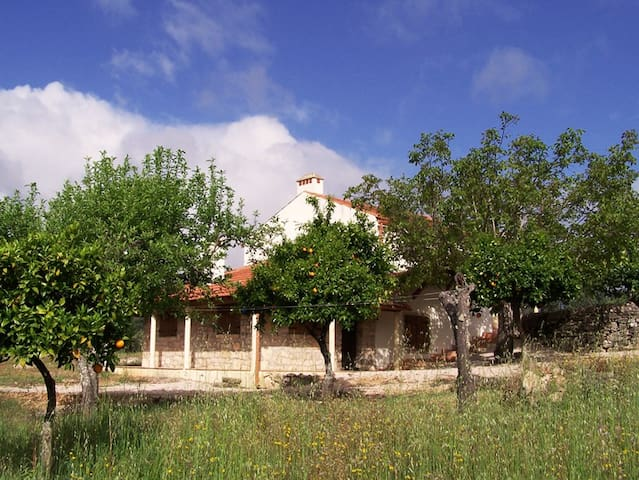 Rural spacious house near Tomar - Ferreira do Zêzere