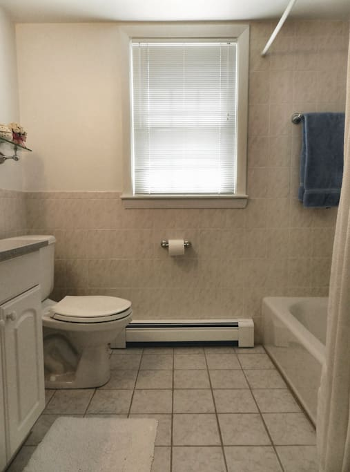 Private bathroom, shower/tub on right