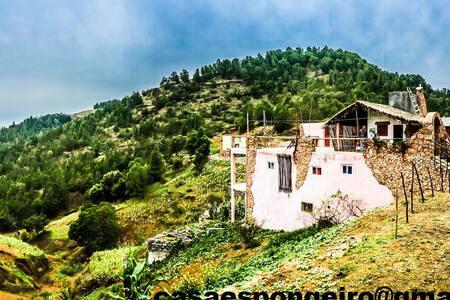 Casa Espongeiro + MTB option