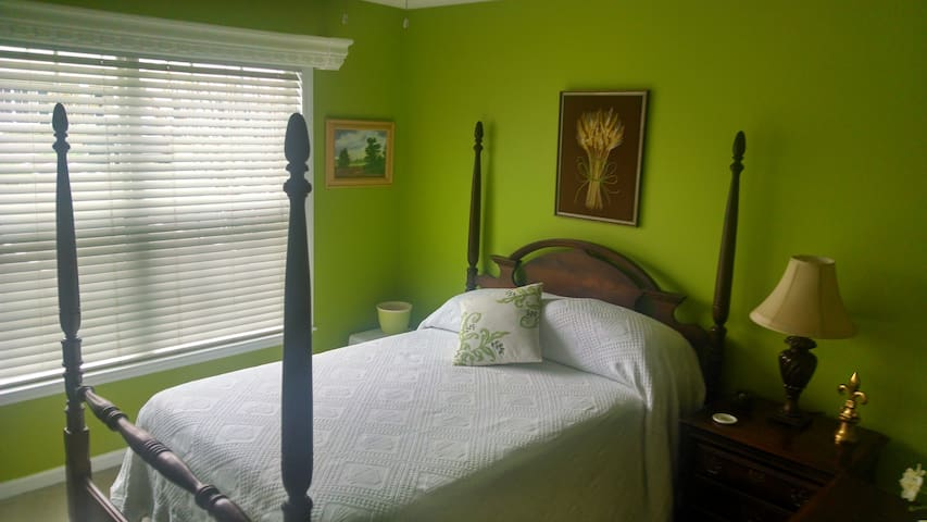 Cozy private room with parking - Greensboro - Apartment