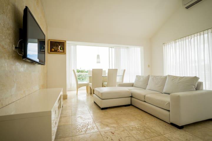 Penthouse Suite - Apartamento Del Cerro Samana - Samana