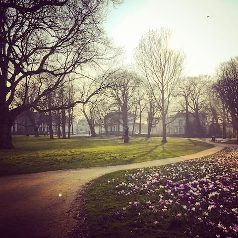 Kenaupark in spring (400m from the Studio)