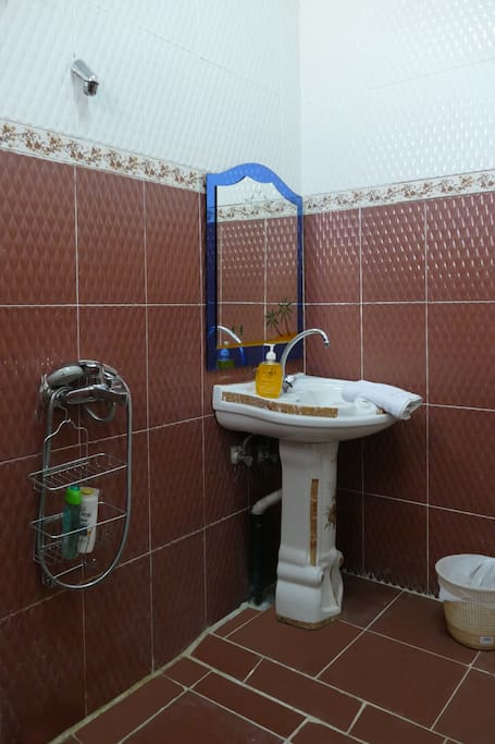Private en-suite bathroom with shower and toilet