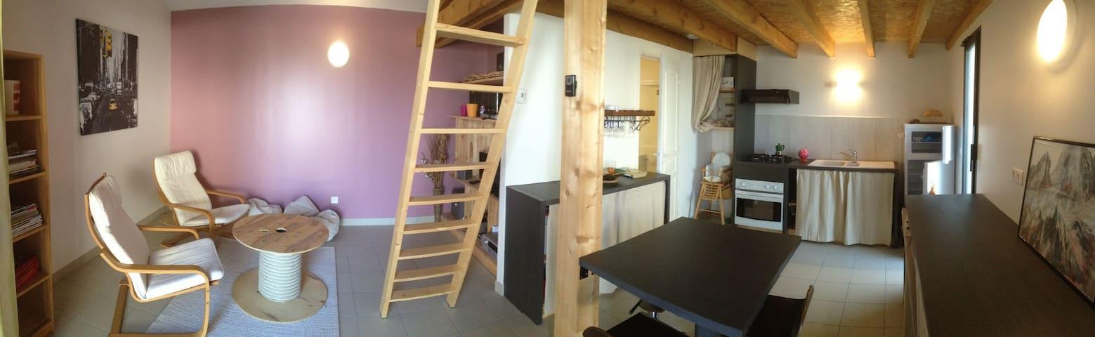 Loft indp 40m2 chambre mezzanine proche du lac - La Motte-Servolex - Loft