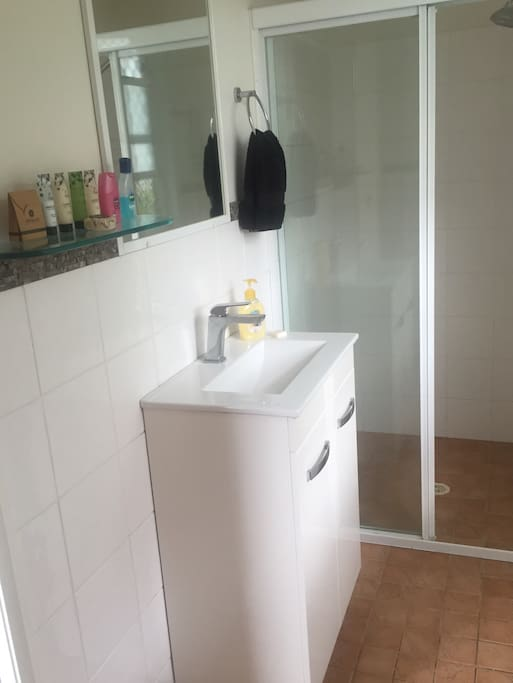Ensuite with good shower pressure and massaging shower head