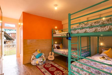 Bunk Beds in 4 Bed Mixed Dorms