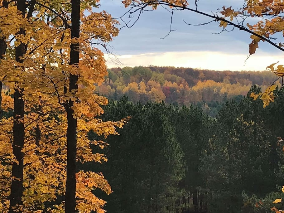 View from the top of our hill in the back yard (fall).