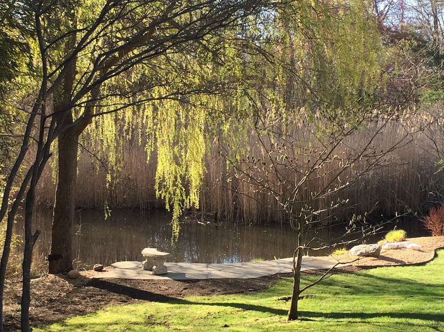 As you walk up to the front door look to the left at the charming seating area.  My favorite place to catch my thoughts under the majestic willow tree.  See the ducks to the right?