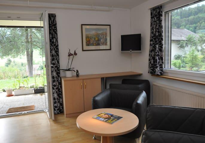 Wohnzimmer mit TV  Ausgang Gartensitzplatz und dem 5. Bett ( Schrankbett)