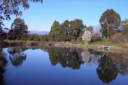 Swanpool Creek Bed & Breakfast - Swanpool