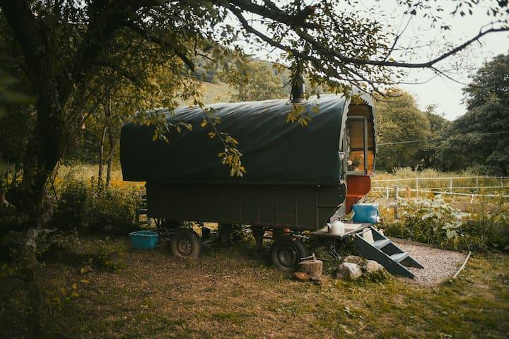 Gypsy Caravan by the stream