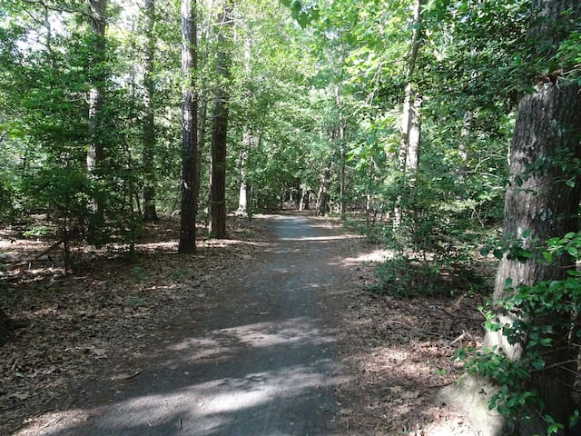 Junction & Breakwater Trail (access at the back of the community)