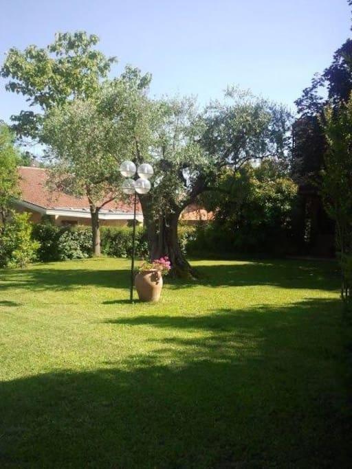Ampio giardino di proprietà.