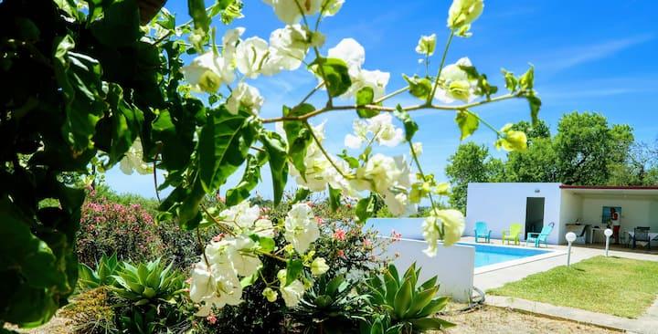Bela Vista Retreat: Lavender House