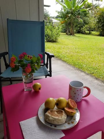 Breakfast on the lanai with fresh guavas from the garden.