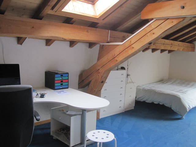Room near UN and Airport - Genève - Hus