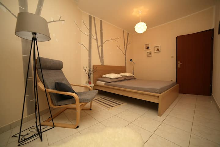 Dandelion appartamento