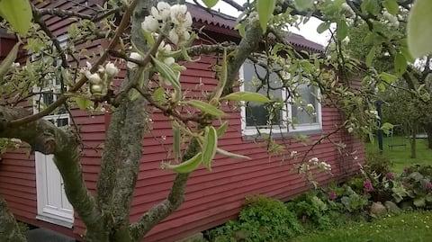 Hyggelig havehytte i Pederstrup