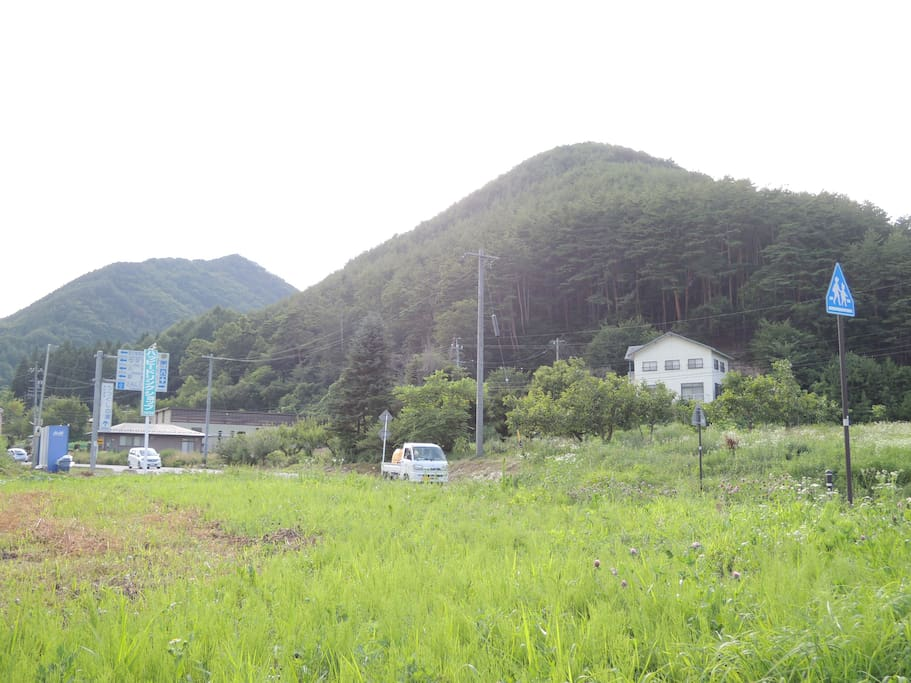 周囲の風景