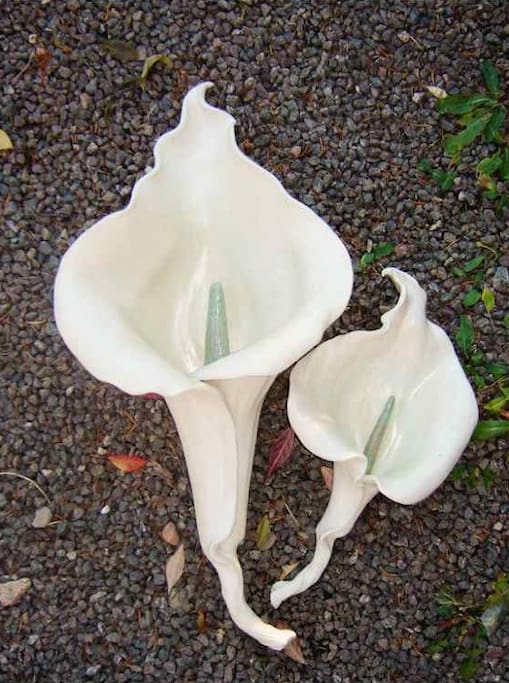 Hanging lily sculpture by Karin Bach.