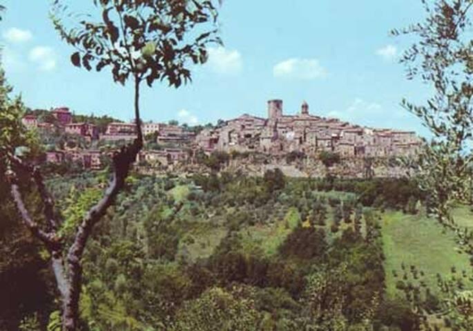 Affittasi appartamento per estate - Civitella d'Agliano - Leilighet