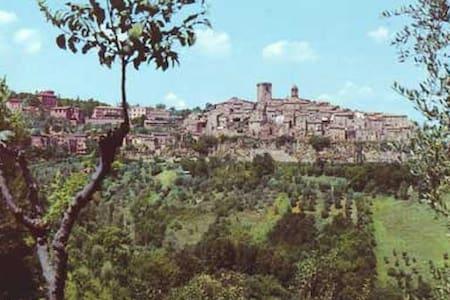 Affittasi appartamento per estate - Civitella d'Agliano - Apartament