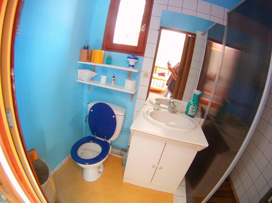 cabinet de toilette wc , lavabo et douche.