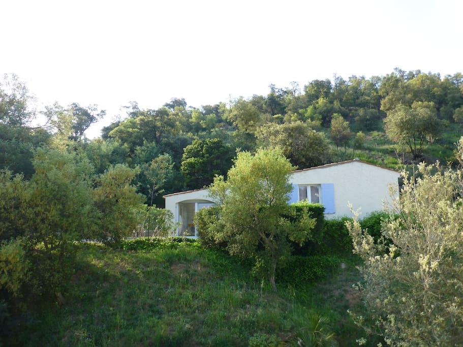 situee au bord de la zone naturel , a cote de la riviere Siagne (Peygros, Auribeau)