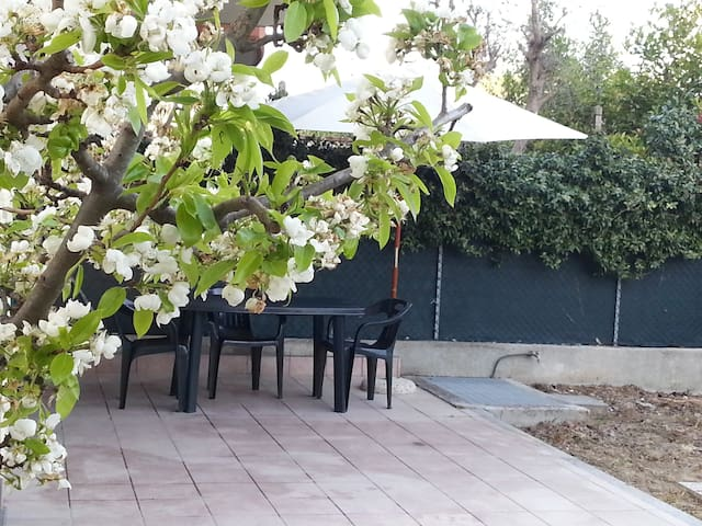 Reina del Mar -with private garden - Igea Marina - Casa