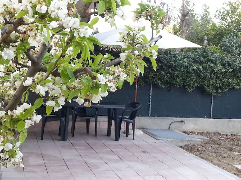Casa con giardino vicino al mare appartamenti in affitto a igea marina emilia romagna italia - Casa con giardino milano ...