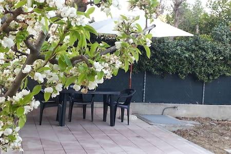 Reina del Mar -with private garden - Igea Marina