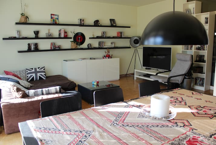 Nice Apartment in Meyrin - Meyrin - Appartement