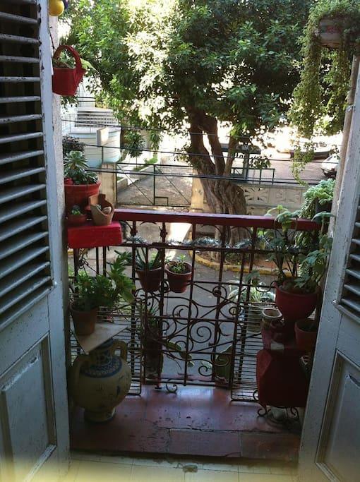 Balcony, casa particular, havana