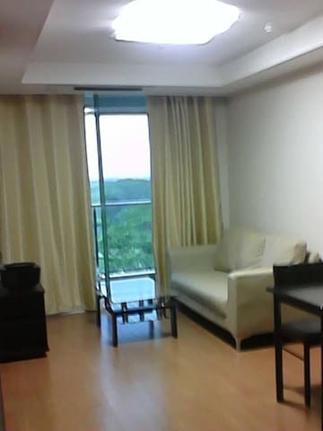 Luxury 1 bedroom condo with wifi - Angeles - Apartment
