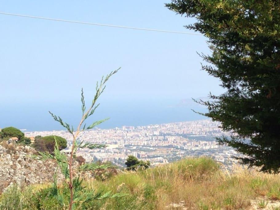 Vista panoramica Palermo e mare!
