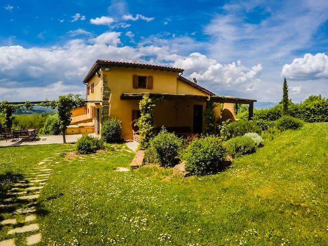 Private home among olive groves, near Florence